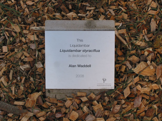 photos/alan-waddell-tree-dedication-ceremony-2-td.jpg