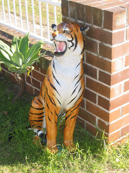 kyeemagh-fences-tiger-2-uf.jpg