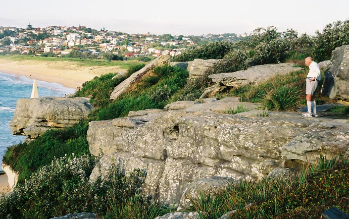 north-curl-curl-headland