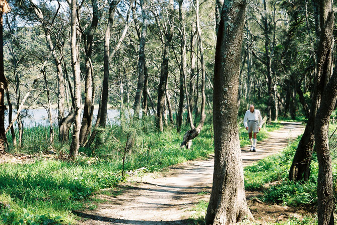 north-narrabeen-lake-walk-xw.jpg