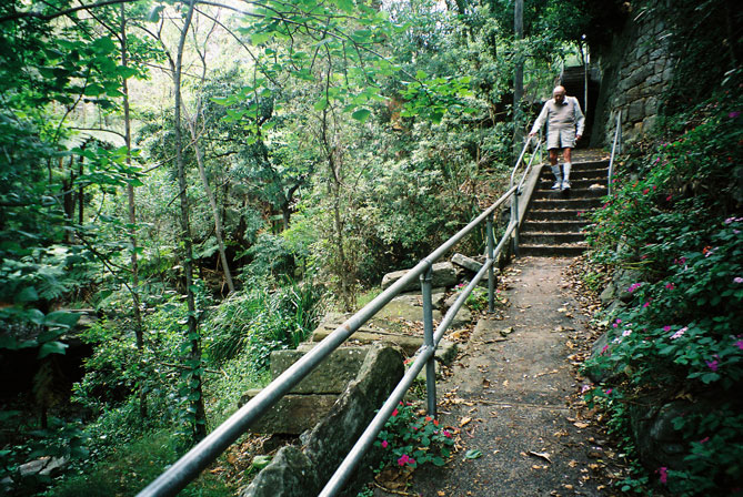 vaucluse-bush-rock-steps-2-e.jpg