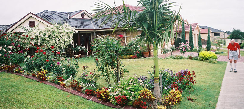 woodcroft-garden-colourful-xg.jpg